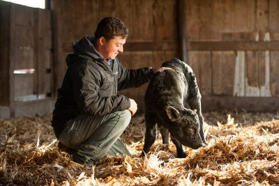 A farmer with a hand on the back of a young calf on his Iowa farm