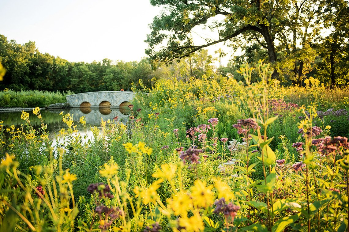 Beautiful scenic image of the prairie grass, flowers and stone bridge at Silver Lake in Rochester MN