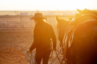 Editorial photography of Colorado cowgirl walking horse at sunset