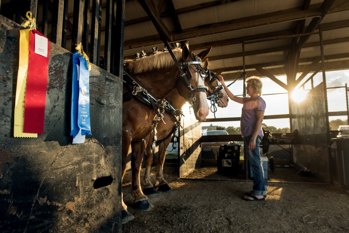 Editorial portrait of woman with horses at Rochester mn fair