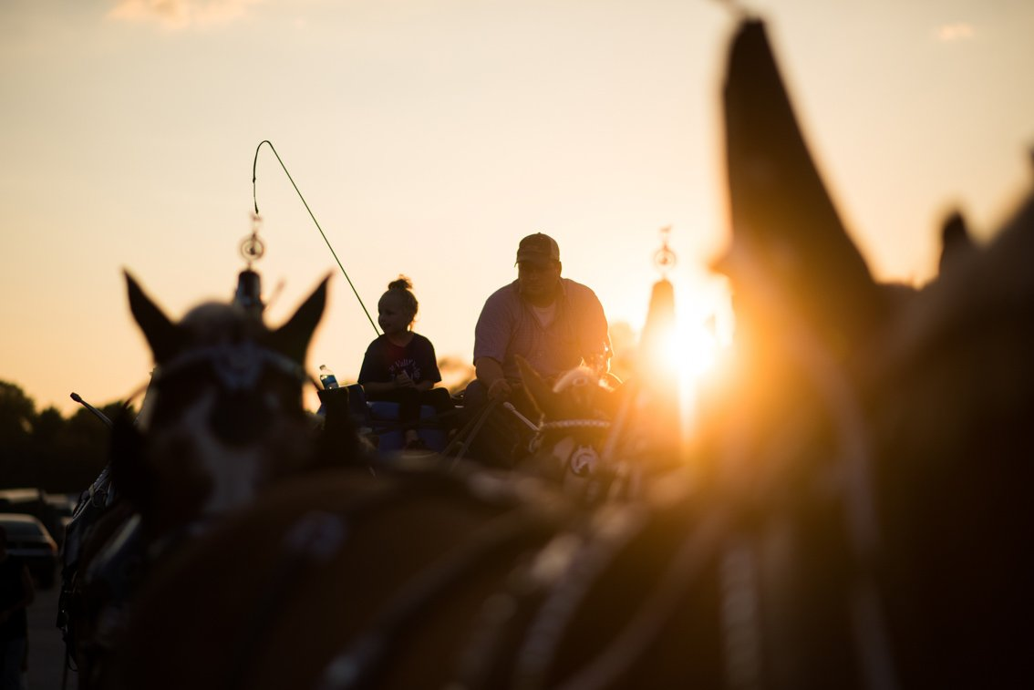 Editorial photo of horse team at Rochester mn fair