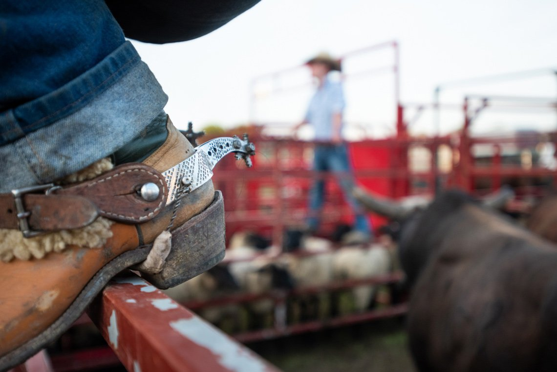 Editorial photography of a cowboy's boot spur at rochester mn rodeo