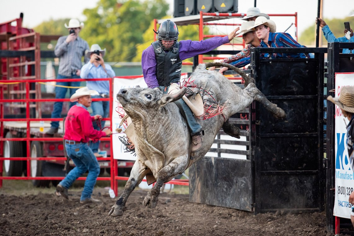Editorial photography of rider on bull at rochester mn rodeo