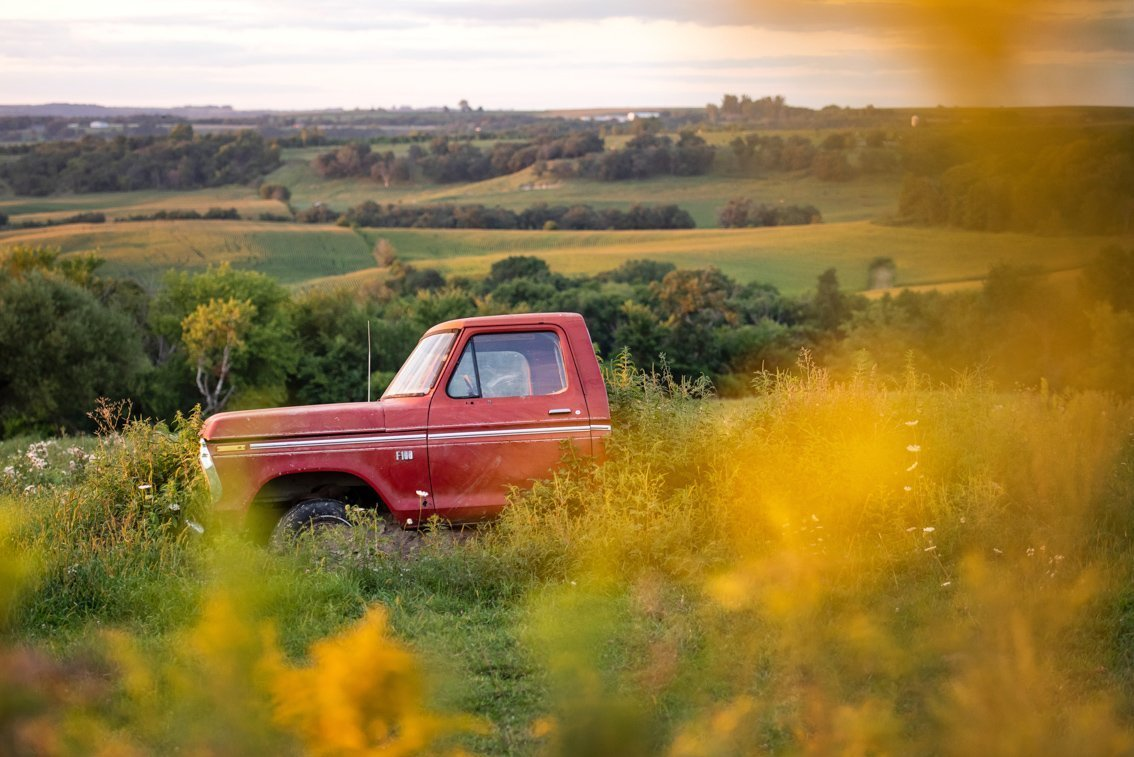 plants surrounding vintage Ford F100