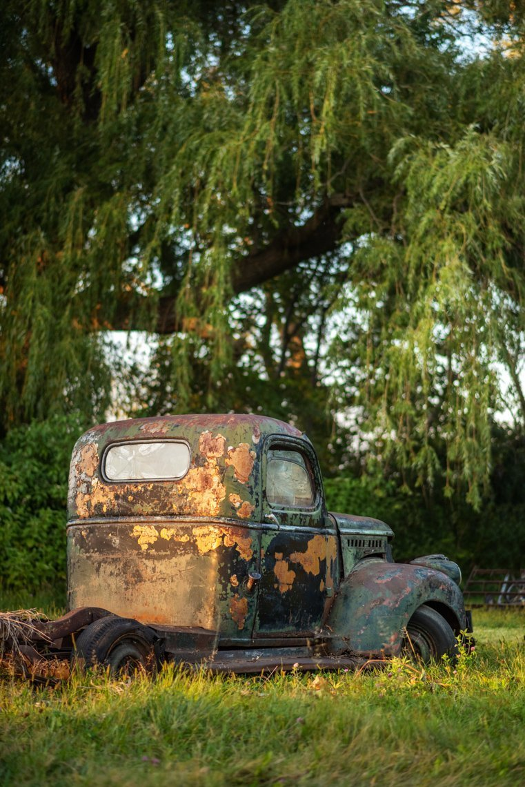 back of abandoned Chevy Pickup truck
