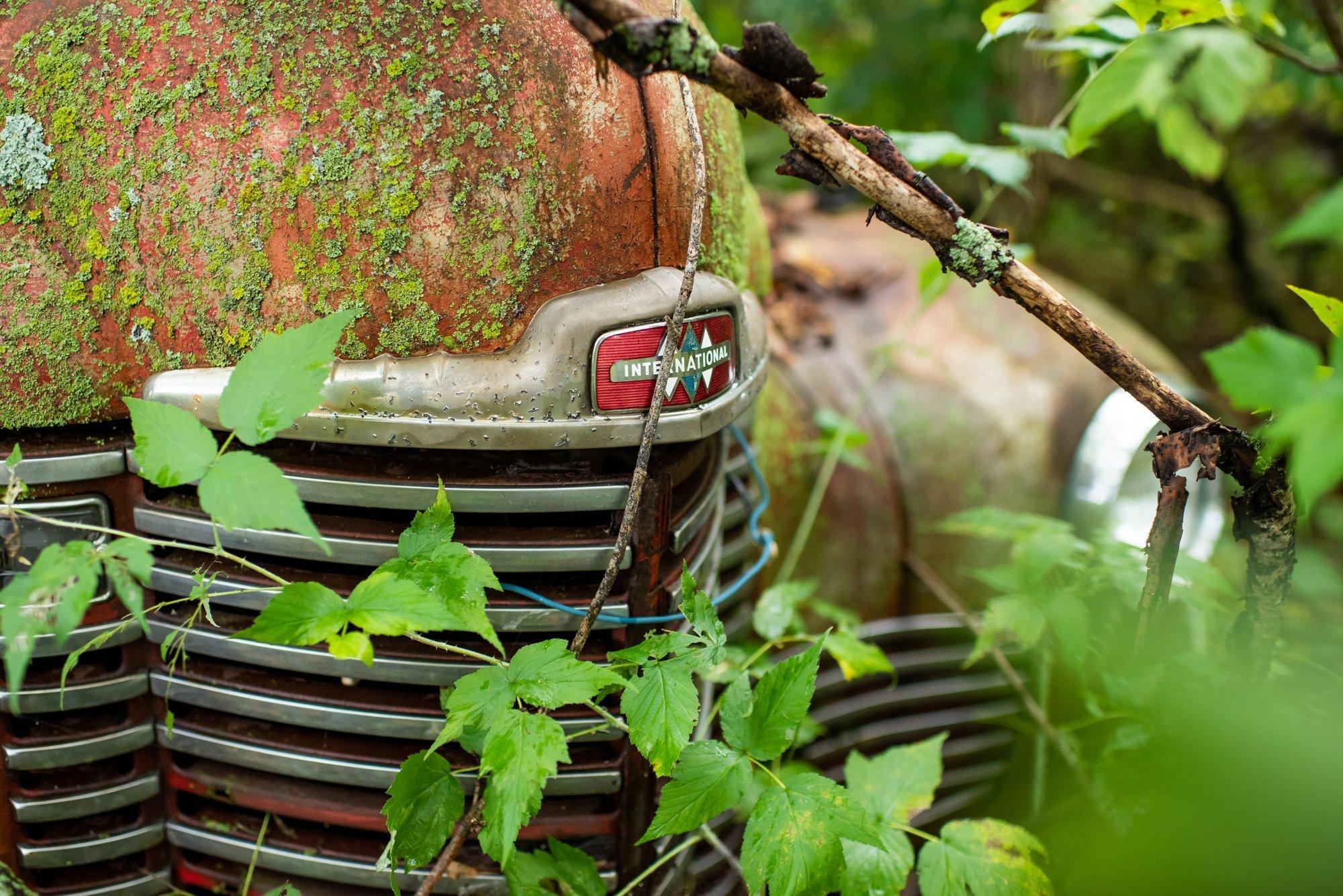 rusted International KB3 hood